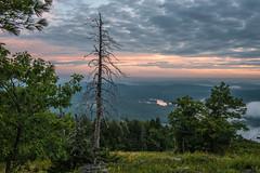 alpine sunrise (paul noble photography) Tags: maine mainephotographers morning morninglight sunrise summerinmaine serene shawneepeak hikemaine shawneepeakmaine nikon nikon2470mmf28 northeast paulnobleimages paulnoblephotography landscape landscapephotos