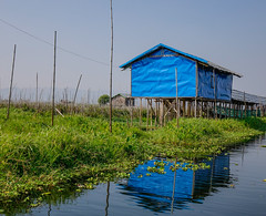 Floating houses on Inle Lake, Myanmar (phuong.sg@gmail.com) Tags: asia asian balance bamboo blue boat burma burmese ecology entrapment environment farmer fish fisher fishing food house inle lake myanmar nature peaceful poor poverty reflect reflection ripple river southest sunrise technique tourism tourist tradition traditional tranquil travel tropical village water weed wooden