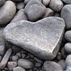 Heart Rock (andtor) Tags: hmm macromondays rock rx100miii heart herz stein