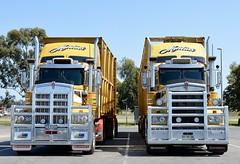 Martins (quarterdeck888) Tags: trucks photos truckphotos australiantrucks outbacktrucks workingtrucks primemover class8 overtheroad interstate frosty quarterdeck jerilderietrucks jerilderietruckphotos flickr bdoubles lorry bigrig highwaytrucks interstatetrucks nikon truck martins roadtrain bdouble stockcrate t909 kenworth
