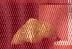 orange-enclosure (kaumpphoto) Tags: mamiya nc1000s kodak portra 800 orange green enclosure street urban city minneapolis abstract pattern hole plastic