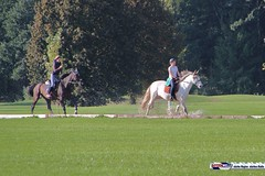 am_polo_cup18_0350 (bayernwelle) Tags: amateur polo cup gut ising september 2018 chiemgau bayern oberbayern pferd pferdesport reiter bayernwelle foto fotos oudoor game horse bavaria international reitsport event sommer herbst