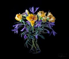 Lavender and Roses (Summername) Tags: flowers vases glass lavender roses purple yellow canon flickr stilllife botanical flora blackbackground