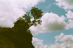 (analogrem) Tags: sky clouds summer rock tree lonely analog film nature japanese landscape mountain backlight