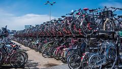 2018 - Amsterdam - Bicycle Storage (Ted's photos - For Me & You) Tags: 2018 amsterdam cropped nikon nikond750 nikonfx tedmcgrath tedsphotos vignetting shadows shadow bike rack