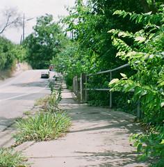 (berangberang) Tags: boxformensign 6x6 mediumformat fujifilm sidewalk bridge street trees