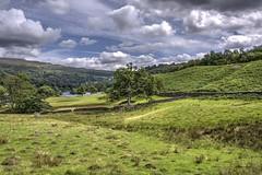Rydal Water, nr Grasmere, Cumbria . . . #LakeDistrict #Cumbria #RydalWater #Grasmere #Ambleside #NaturalBeauty #Landscape #HDR #Bracketing #Poloriser #Lake #BlueSky #Clouds #Trees (cris.gerrard) Tags: trees hdr lakedistrict naturalbeauty cumbria bracketing poloriser lake bluesky clouds rydalwater landscape ambleside grasmere