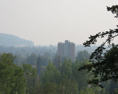 Wildfire smoke over city ~ 1 (diffuse) Tags: princegeorge smoke wildfires city visibility trees connaughthill viewpoint highrise building apartments