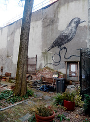 East Village, NYC (Clara Ungaretti) Tags: eastvillage street streetlife streetphotography urban novayork newyork newyorkcity nyc ny manhattan urbanart estadosunidos estadosunidosdaamérica us usa unitedstatesofamerica unitedstates america