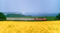220 an der Ostsee (horstebertde) Tags: acker eisenbahn ostsee meer küste wendezuglokamschlus 220 nwagen de v200 silberlinge wendezug wintershagen eilzug raps