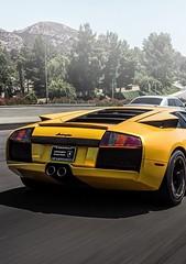 Carload of Sunshine (partsavatar) Tags: cars autoparts carparts canada vancouver montreal toronto yellow yellowcars sunshine bright lamborghini