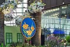 Orchid Extravaganza (chooyutshing) Tags: flower orchid orchidextravaganza floraldisplay flowerdome gardensbythebay baysouth marinabay singapore