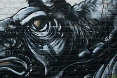 ROA (rrover69) Tags: 2018 belgie gent grafitti roa streetart vakantie vlaanderen