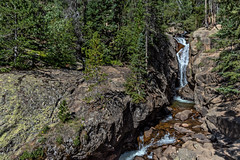 Chasm Falls widest view yet (Pejasar) Tags: chasmfalls widerview rock rockymountainnationalpark fallriverroad forest trees mountain beauty water waterfall