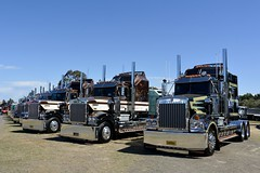 Limited Edition (quarterdeck888) Tags: trucks photos truckphotos australiantrucks outbacktrucks workingtrucks primemover class8 overtheroad interstate frosty quarterdeck jerilderietrucks jerilderietruckphotos flickr bdoubles lorry bigrig highwaytrucks interstatetrucks nikon truck kenworth kenworthclassic kk kenworthclassic2018 truckshow truckdisplay workingclasstrucks noprizes limitededition t950 t900 legend legendkenworth