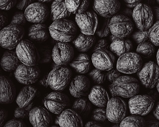 walnut b/w