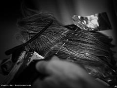 _DSC4364 (Pascal Rey Photographies) Tags: coiffure coiffeur coiffeuse cheveux hair haar pellos couleurs couleur color colour colores méches mains jeuxdemains main humain manos mani mano hands hände handwerk handwork hand coupe coupedecheveux blue bleu blau azul azzurro pascalrey nikon luminar2018 pascalreyphotographies photographiecontemporaine photos photographie photography photograffik photographiedigitale photographienumérique photographieurbaine chromophobia monochrome blackwhite blancoynegro noirblanc noiretblanc schwarzundweiss schwarzweiss zwartwit capelli parruchiere peluqueria friseur peigne rasoir razor comb pettine peineta