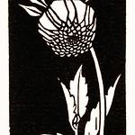 Dahlia (1920) by Julie de Graag (1877-1924). Original from the Rijks Museum. Digitally enhanced by rawpixel. thumbnail