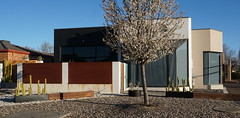 rusty steel, concrete , cactus and blossoms (spelio) Tags: act canberra australia