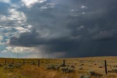 Prairie storm (hey ~ it's me lea) Tags: hff happyfencefriday saskatchewan summerstorm prairie fences clouds cloudporn