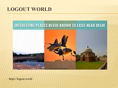 Interesting Places never known to exist near Delhi | Logout World (logoutworld001) Tags: interesting places near delhi logout world okhla bird sanctuary gurgaon tughlaqabad fort surajkund