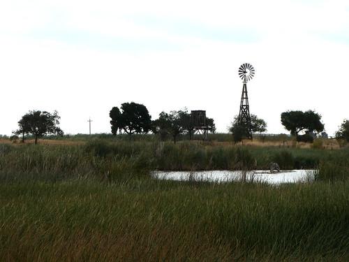 2018-08-30 - Walking inside DOW Wetlands