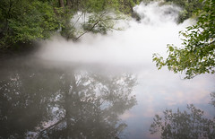 FogxFLO Leverett Pond (ErikAndHisCamera) Tags: boston jamaicaplain fog olmsted leverettpond brookline fogxflo