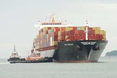 MSC Vidisha R. (jelpics) Tags: tug tugboats cargoship commercialship containership merchantship msc mscvidishar freedom justice boat boston bostonharbor bostonma harbor massachusetts ocean port sea ship