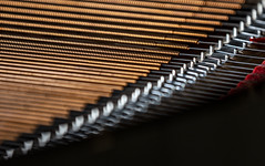 Cu a'wound, Steinway (MyArtistSoul) Tags: piano strings lowregister cu copper wound tension stretched red felt wood soundboard shadow availablelight natural sunlight f28 dof bokeh focus musical instrument closeup details parallel lines curve pattern 5309