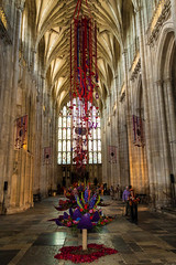 WinchesterFF2018-3356 (Parapan) Tags: canoneos7dmkii winchester cathedral flowers