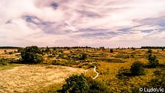 Fagnes spadoise (Lцdо\/іс) Tags: fagnes fagnard malchamps spa belgique belgium belgie beauty landscape ardennen ardennes ardenne septembre september 2018 paysage lцdоіс europe europa sauvage wild treking