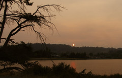 red sunset on the lagoon (axiepics) Tags: sunset red redsunset lagoon esquimaltlagoon colwood victoria landscape scenery evening