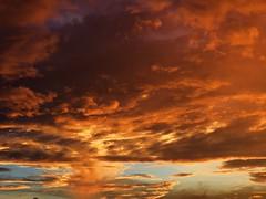 dramatic summer sunset