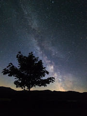 Night sky (G-WWBB) Tags: milkyway mars perseids meteors perseidsmeteors gwynedd northwales llyndinas tree silhouette nightsky stars astrophotography canon6d canon canonphotography cymru longexposure