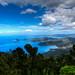 Isola d'Elba #5
