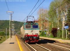 Tigre solitaria - E.652 173 (Pignata Matteo) Tags: e652 tigre treno merci trenitalia cargo ferrovia binari linea ferroviaria scatto foto archivio