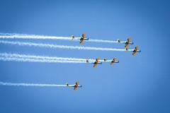 _Z2A9786 (Fabiosantos25) Tags: esquadrilhadafumaça esquadrilha 5dmkiv ef100400isii ef100400mmisii ef100400ii 7desetembro setedesetembro independencia smokesquadron supertucano avião plane sky blue azul brasil brazil
