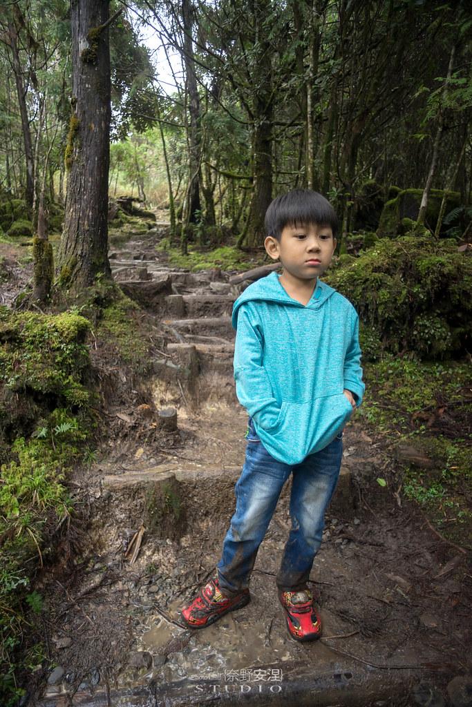太平山翠峰湖環山步道 |走在泥濘的道路上,只為途中美景 | 宜蘭大同鄉53