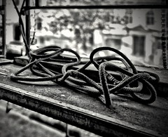 Good morning outside (maramillo) Tags: rope seil bw blackandwhite otr