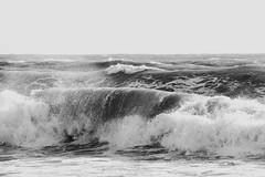 onde onda ondata (Antonio Piccialli) Tags: 2018 bn canon bw biancoenero blackwhite canoneos60d cilento castellabate santamariacastellabate explore wave explored flickr flickrclickx fluidr mare tempestamare mareggiata