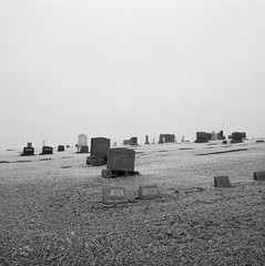 In a Cemetery, Steptoe, Washington (austin granger) Tags: cemetery steptoe washington palouse winter headstones death cold frost fog freezing impermanence time memory bleak square film gf670