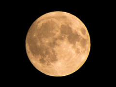 A un día de la luna llena (Carlos Gonga) Tags: moon themoon fullmoon luna lunallena satellite satélite space espacio universo universe crater craters cráter cráteres cuartocreciente crescentmoon