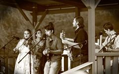 Two Rivers Bluegrass Festival. 5 (EOS) (Mega-Magpie) Tags: canon eos 60d outdoors two rivers bluegrass festival music musicians coon fox hunt club harrison il illinois usa america people person lady man woman dude fella sepia templeton family
