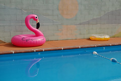 The Circle S Motel Pool (radargeek) Tags: colorado coloradosprings road travel circlesmotel pool flamingo inflatables mural swimming motel 2017 july