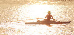 Sculling at sunset (sonstroem) Tags: silhouette sculling shell boat river sunset exercise workout water