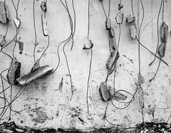 Transformation of a city - Modern fresco († Nicolas Blind †) Tags: 6x7 bw canoscan9000fii hc110 hp5 ilford kodak nb pentax saintgenispouilly technique architecture black blackwhite blackandwhite blanc city destruction evolution filmisnotdead noir noirblanc noiretblanc post posttraitement postprocessing processing rebirth renaissance street traitement white