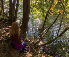 Late Summer (bjorbrei) Tags: water lake pond tarn shore trees trunks foliage backlight shimmer glimmering sparkles sparkling langevann linderudkollen solemskogen lillomarka marka oslo norway