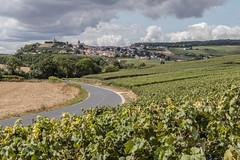 Châtillon (ClydeHouse) Tags: champagne vineyard 51 châtillonsurmarne binsonetorquigny byandrew vignoble grandest marne france