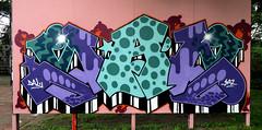 graffiti in Haarlem (wojofoto) Tags: haarlem nederland netherland holland graffiti streetart wojofoto wolfgangjosten hetlandje hof