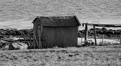 IMG_1302 (2) (www.ilkkajukarainen.fi) Tags: norja norway visit travel travelling stuff museum ilkkajukarainen blackandwhite monochrome mustravalkoinen varanger barentssea sea meri happy life barn lato ranta